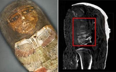 Un texte du Nouveau Testament découvert dans une momie égyptienne