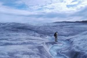 Sous les glaces du Groenland, des chercheurs découvrent une toundra âgée de 2,7 millions d'années