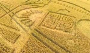 L'oiseau de Foudre des Amérindiens découvert dans un Crop Circle en Angleterre