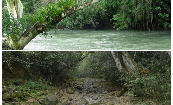 La Terre s'ouvre au Mexique et la partie d'une rivière disparait