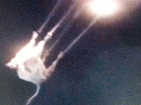 Une VACHE se fait enlever par un OVNI dans le Montana !!
