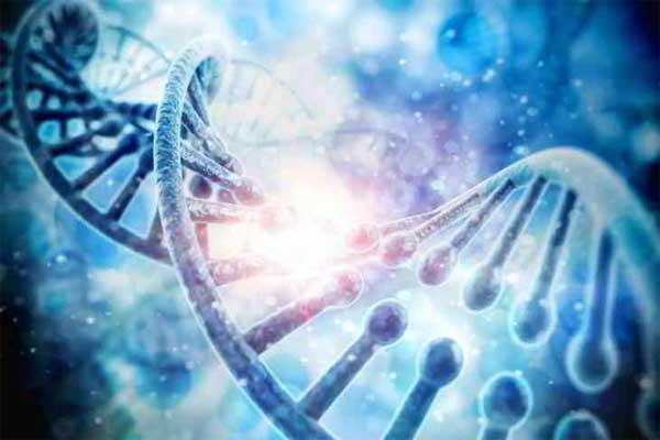 Un virus fossile s'est réveillé dans notre ADN