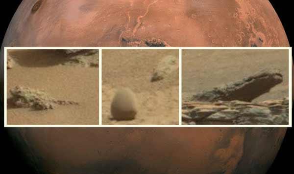 Un crocodile, une grenouille et le fossile d'un oeuf dans des PHOTOS de Mars