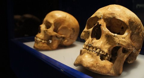 Mystère: Des archéologues ont découvert un autre crâne d'extraterrestre