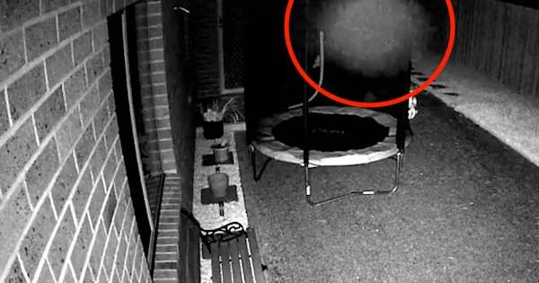Une orbe extraterrestre polymorphe prise en vidéo par une caméra de sécurité