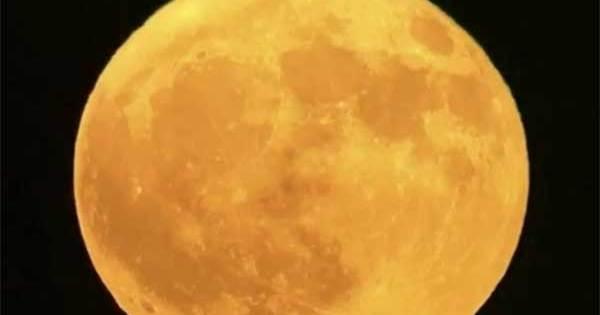 Vidéo: Un OVNI « serpent » filmé aux abords de la Lune