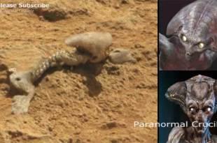 Vidéo: Un squelette extraterrestre a-t-il été découvert sur Mars ?
