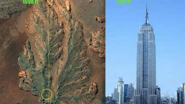 """Vidéo: Un homme a """"trouvé la preuve"""" de l'existence d'une souche d'arbre large de """"10 kilomètres de diamètre"""""""