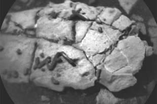 La NASA vient-elle de découvrir des traces d'extraterrestres fossilisés sur Mars ?