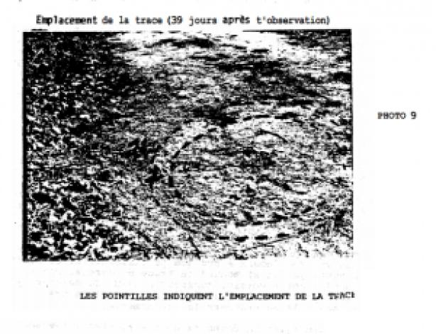 trans-en-provence-case-files