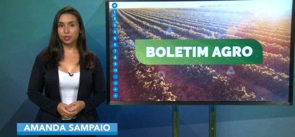 Tendência de chuvas nas regiões produtoras do país nesta semana