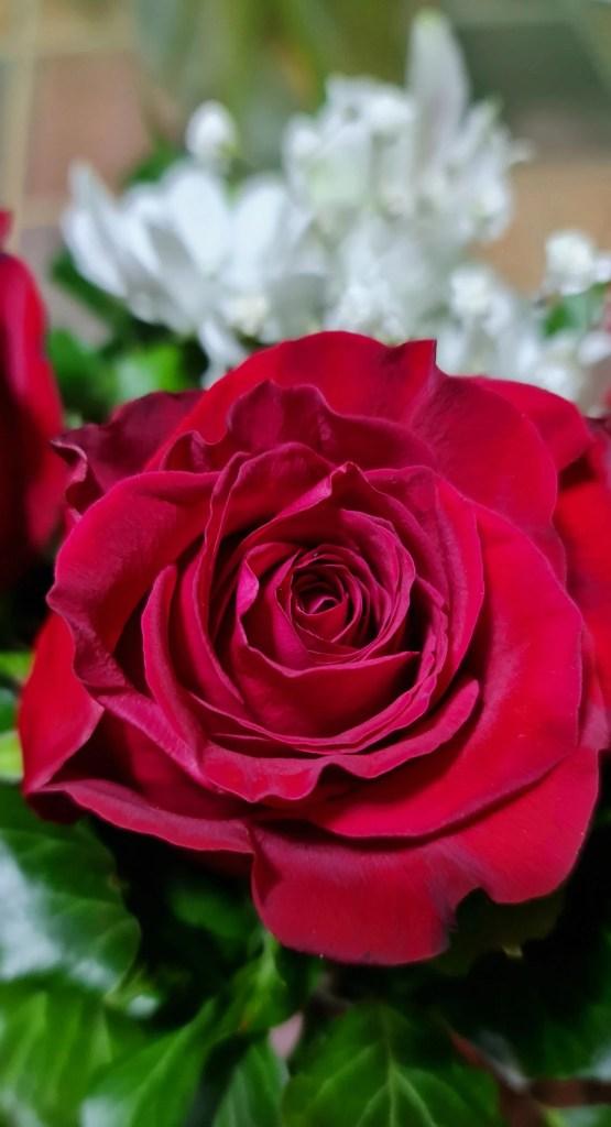 Activeaza iubirea pentru propria viata !,Iubirea autentică,DECALOGUL IUBIRII NECONDITIONATE
