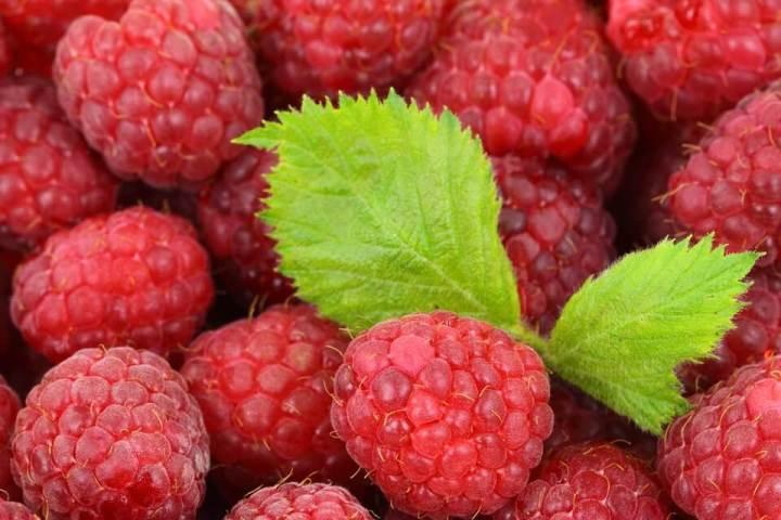 rasberi stoberi bluberry Makanan untuk mengecilkan perut buncit