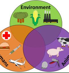 the disease triangle and the one health concept parasite venn diagram animal plant bacterial cells bacteria protist venn diagram [ 1814 x 1474 Pixel ]
