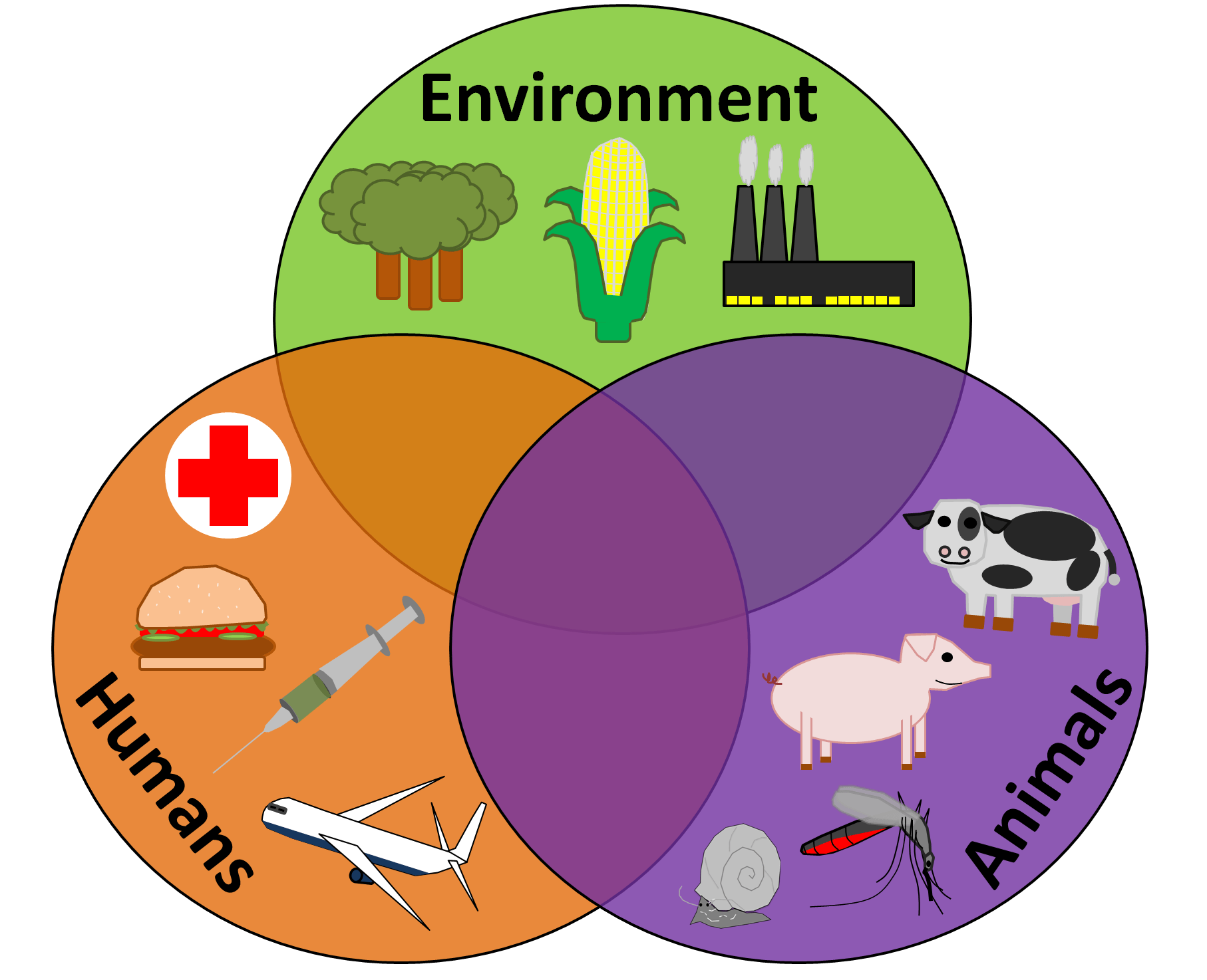 hight resolution of the disease triangle and the one health concept parasite venn diagram animal plant bacterial cells bacteria protist venn diagram