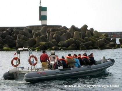 Valas- ja delfiinisafarille lähtö