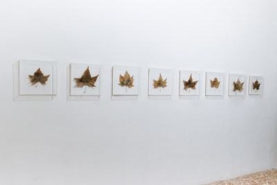 Cinzia Naticchioni Rojas, Best 15 Prize