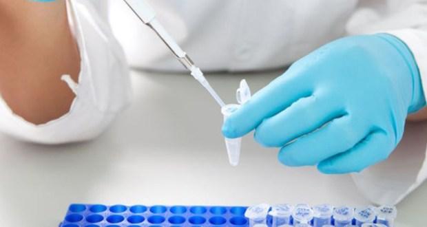 Анализ на энтеробиоз: как проводится и как к нему подготовиться