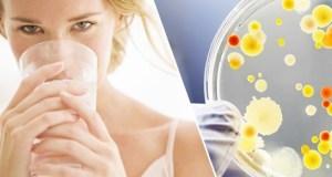 Токсины в организме человека: как от них избавиться