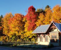 La gare en couleur d'automne