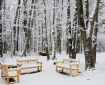 Quelques bancs en hiver