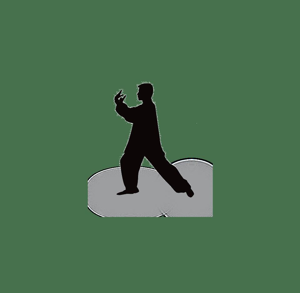 Atelier «Fondements de la pratique Qigong» – 30 mars 2019 – Noyal-sur-Vilaine