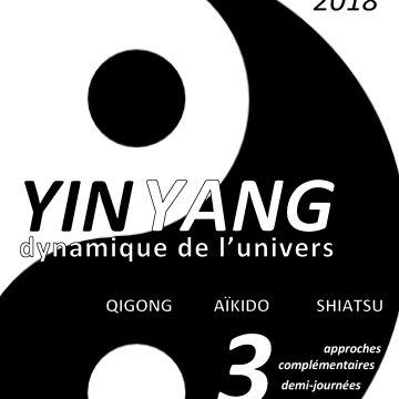 Yin Yang – Stage interdisciplines à Arnay-le-Duc (21)