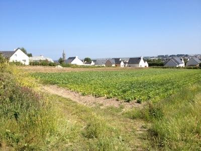 Terrain à bâtir à Saint Pol de Léon