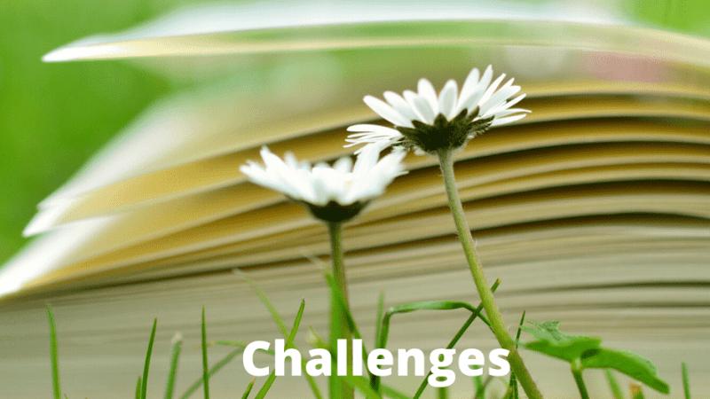 Challenges estivaux, le retour !