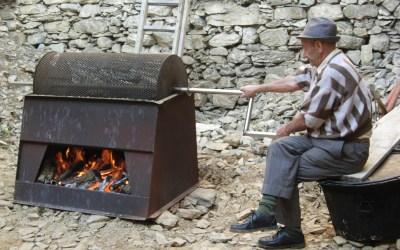 Montegrosso invita le scuole alla Festa della Castagna