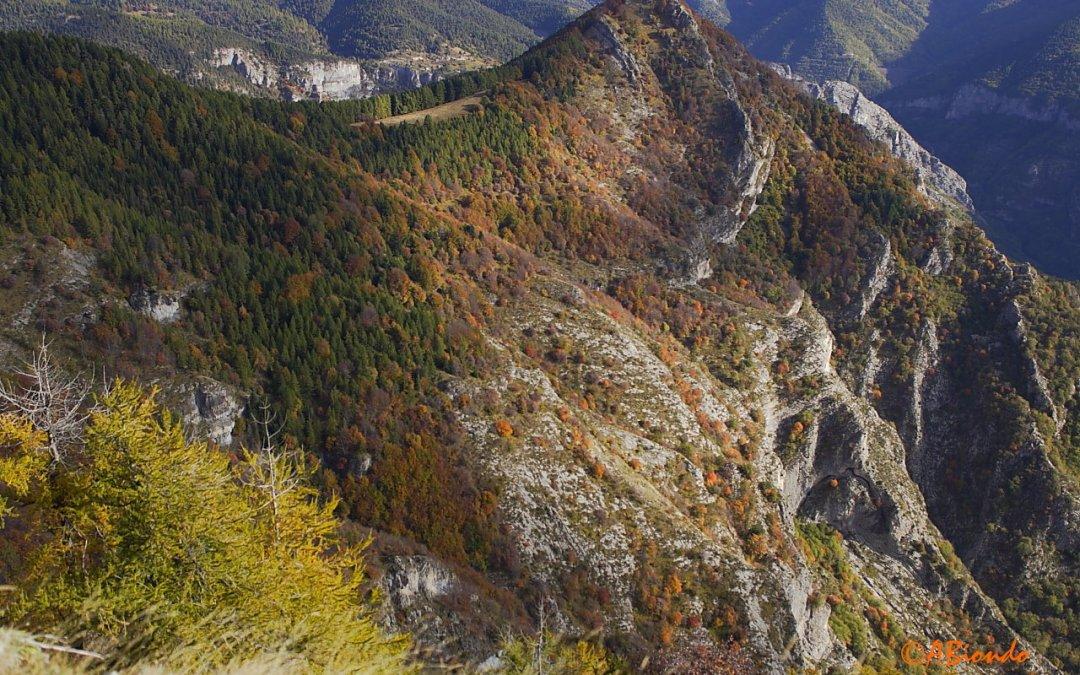 12 novembre – Sul Monte Gerbonte
