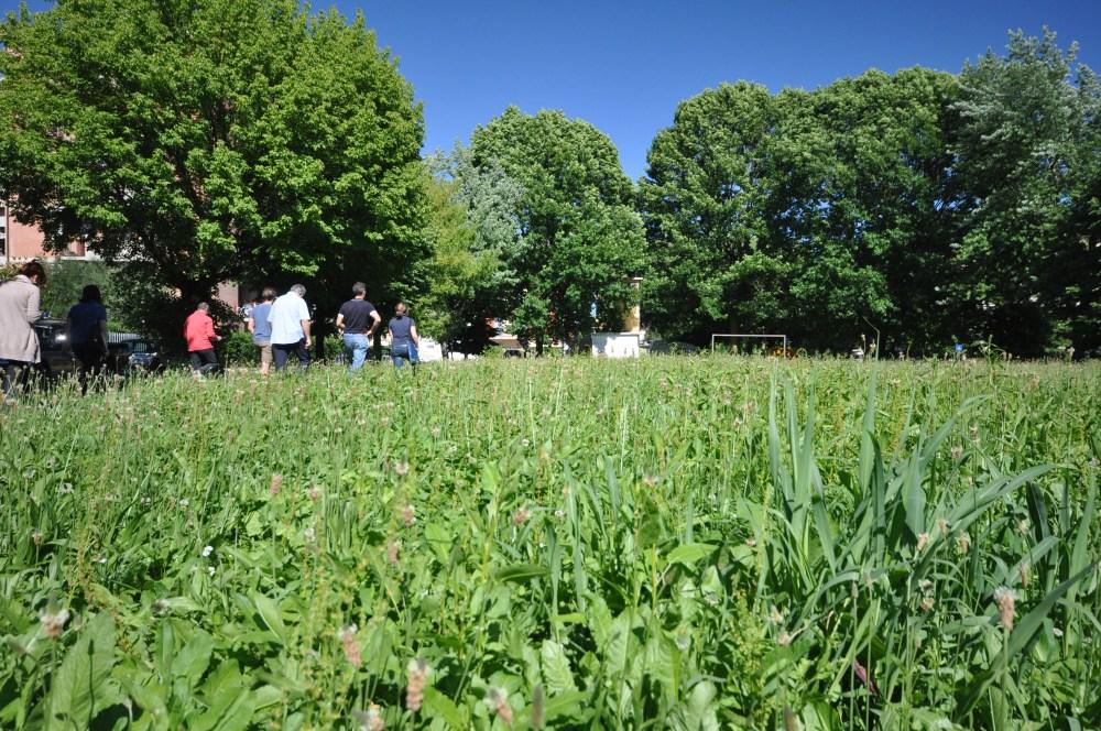 Passeggiata con merenda: alla scoperta dell'area destinata a parco  (6/6)
