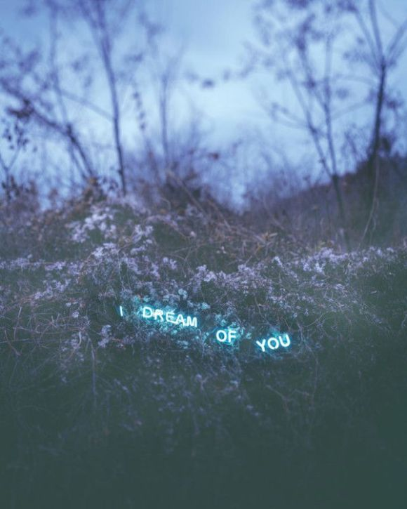 Neon Type Installations in Nature by Jung Lee - Photo Pinterest