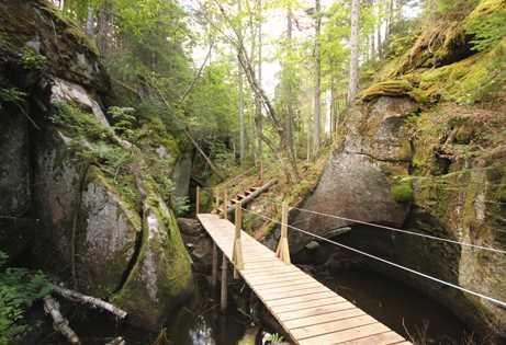 SENTIERS | Des coins cachés à découvrir! | Parc Naturel Régional de Portneuf