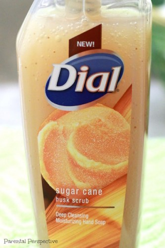 Dial Sugar Cane Husk Scrub Hand Soap   A Review & Giveaway