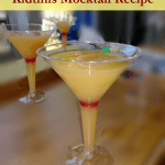 Kid's Mock Cocktail Recipe – No booze