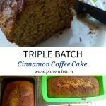 Triple Batch Cinnamon Coffee Cake
