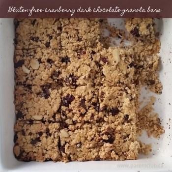 Gluten-free Cranberry Dark Chocolate Granola Bars
