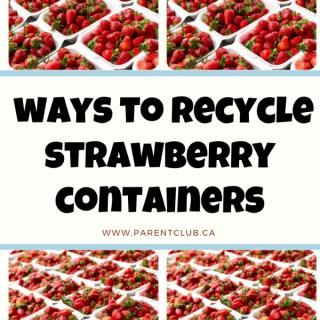 7-ways-to-recycle-strawberry-containers-via-www.parentclub.ca_
