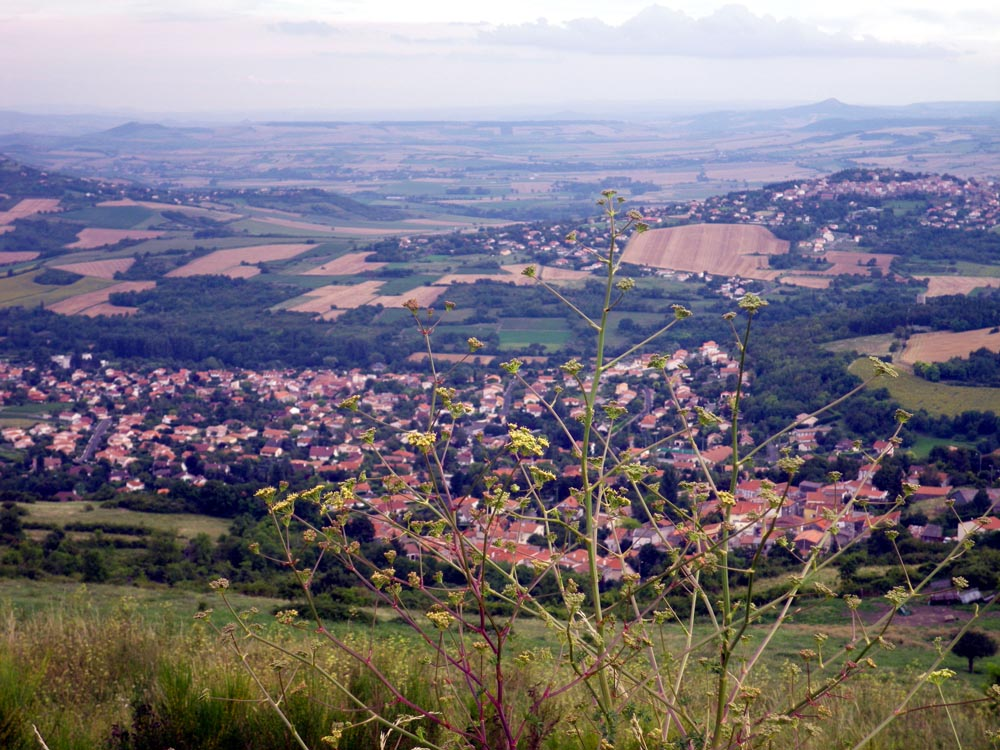 plateau de gergovie