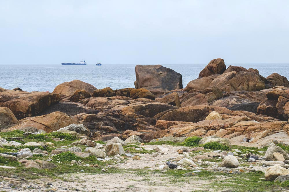 porto tourisme printemps