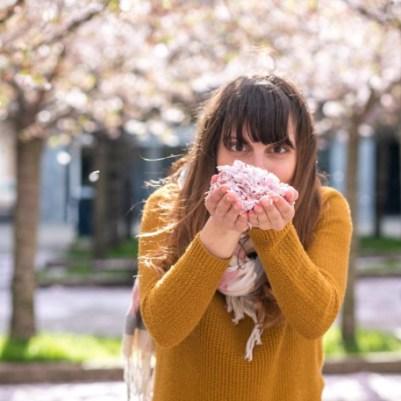 dimanche-mars-printemps-fleurs-4
