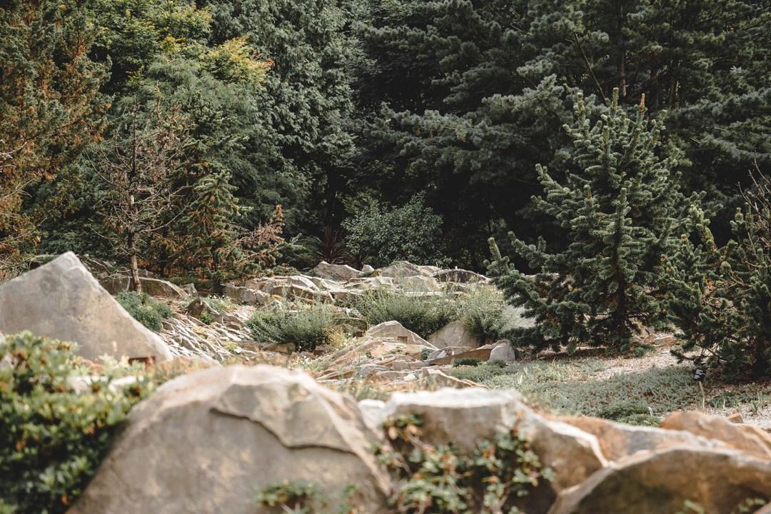 jardin alpin jardin botanique montréal