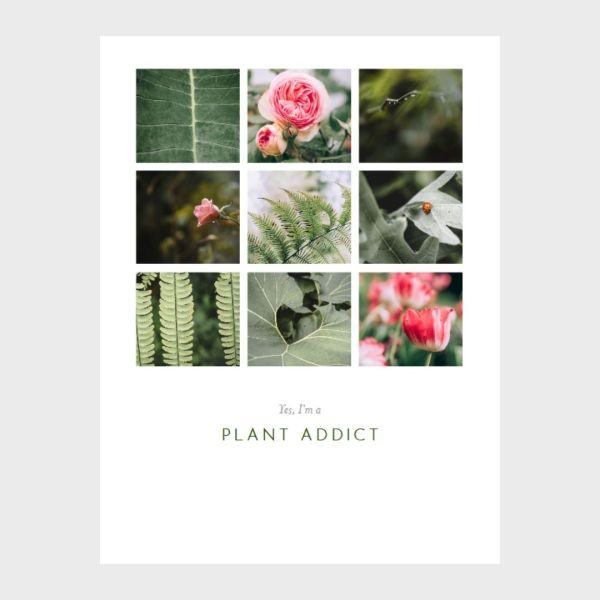 photo print plant addict amoureux des plantes