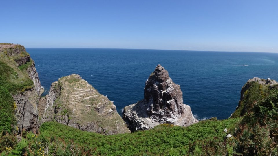 Vue sur le Rocher de la Fauconnière, réserve ornithologique du Cap Fréhel