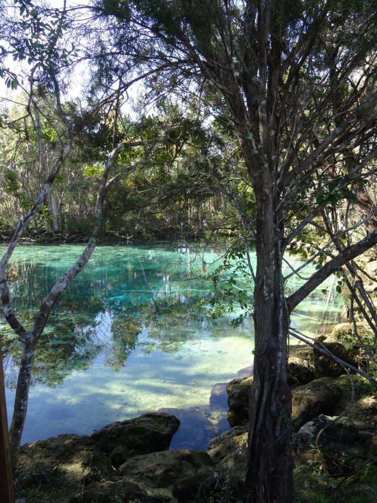 Les sources d'eau chaude de la Crystal River