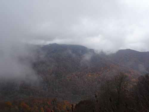 Le célèbre brouillard des Great Smoky Mountain