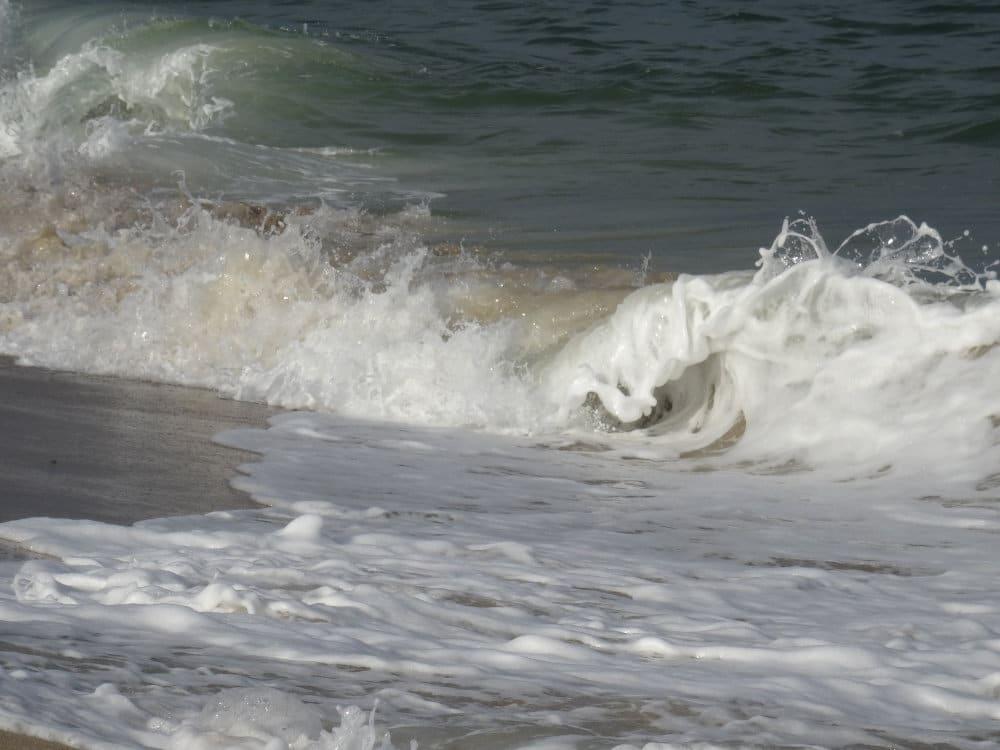 Les rouleaux de l'Atlantique à Cape Cod