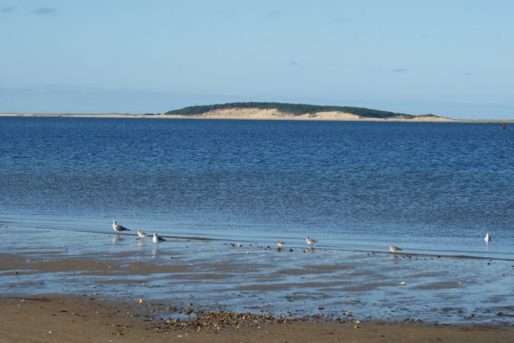 Les lagunes de Cape Cod
