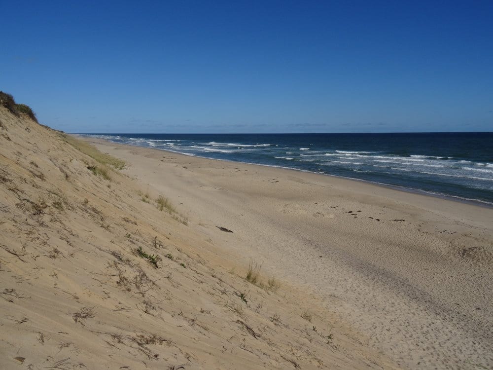 Les dunes de Cape Cod